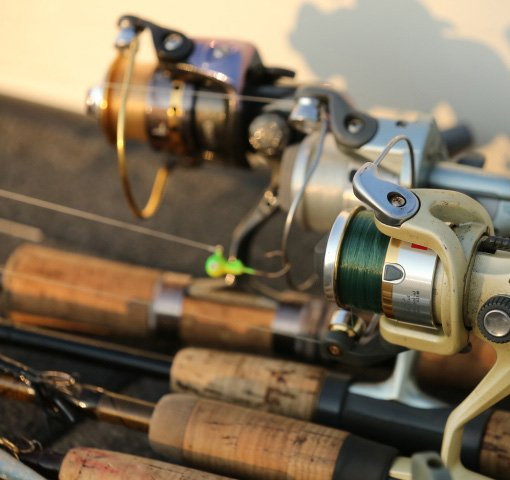 Selecting your freshwater fishing gear